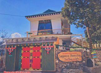Saigonese Homestay